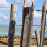 Plusieurs poteaux en bois d'une barrière au bord de la plage. Mer en arrière plan.
