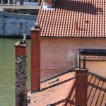 Vue du haut, cheminées sur un toit